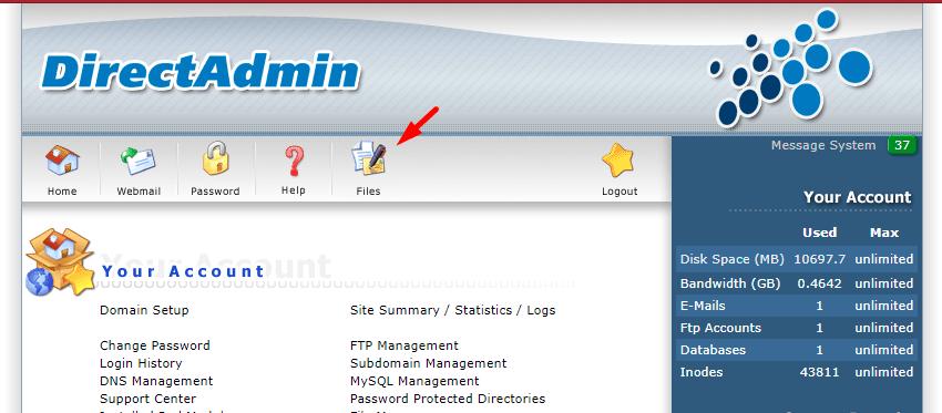 Truy cập menu File Manager trong DirectAdmin